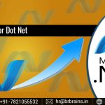 Why Enroll for Dot Net