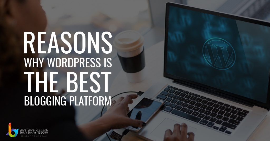 Reasons Why WordPress is The Best Blogging Platform