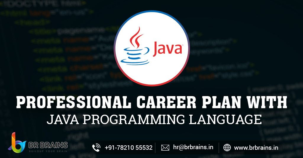 Professional Career Plan with Java Programming Language